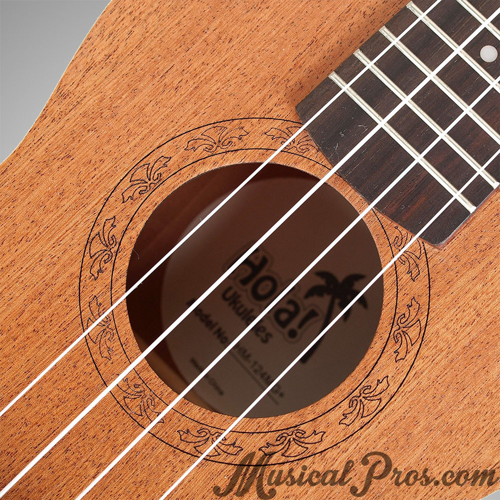 hola music cheap beginner uke