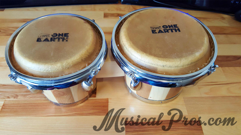 union earth one ub1 bongos