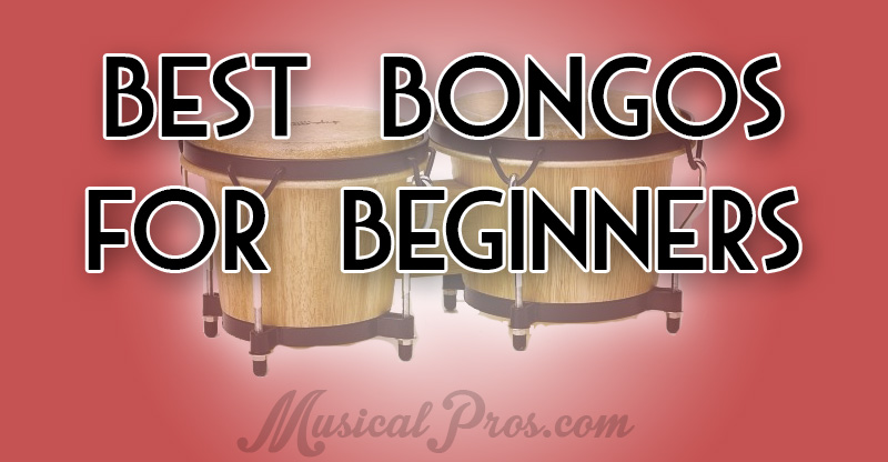 best bongos for beginners