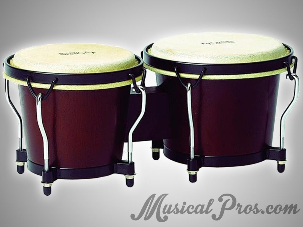 easiest musical instruments for beginner adults - the bongos