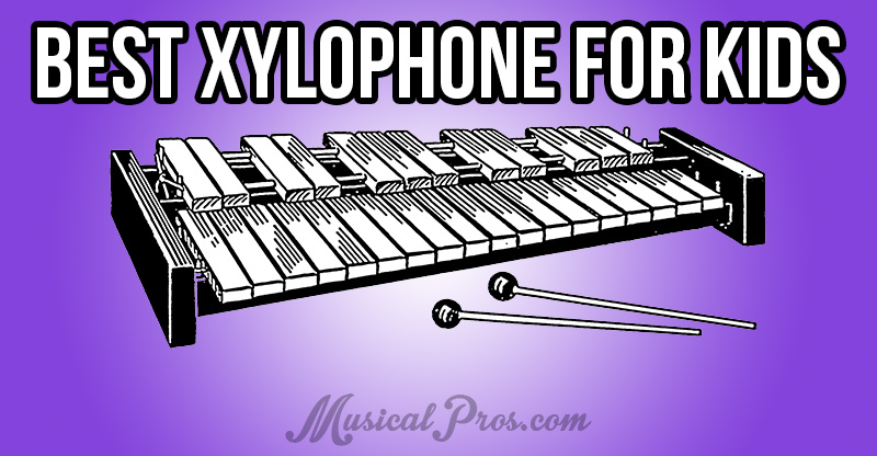 best xylophone for kids